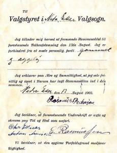 Stemmeseddel 1905