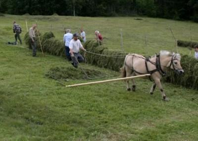 Mannen og hesten...