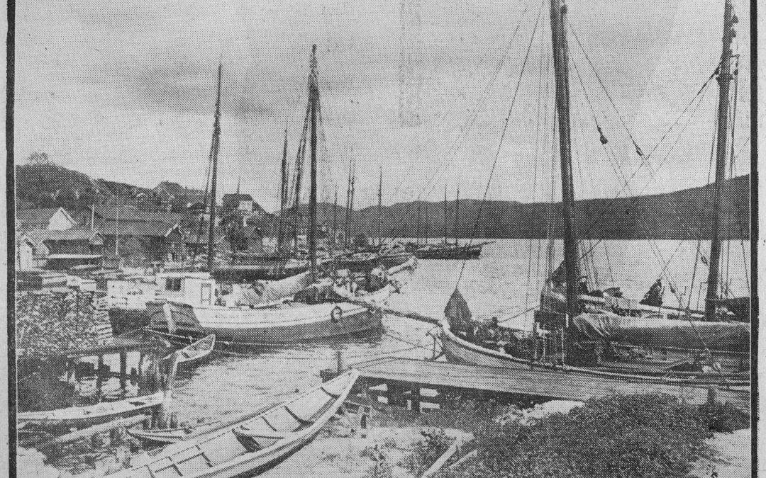 Svelvik havn