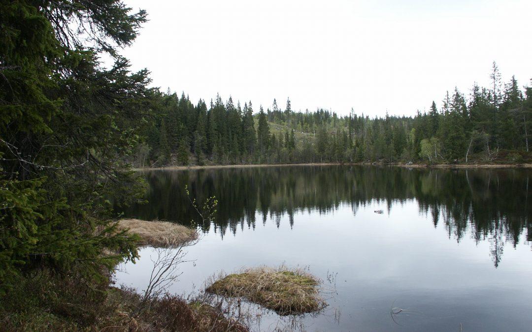 Tur med Eiker Historielag lørdag 29. august