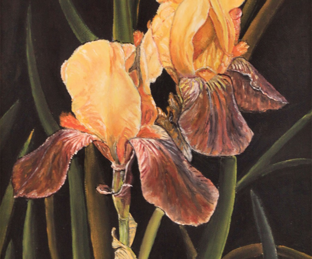 Orkide - Anne-Marie Haug